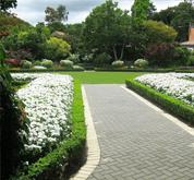 Park ve Bahçe